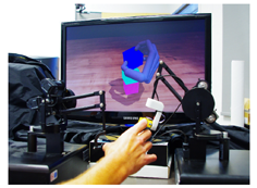 Hands On: a real-time adaptive animation interface with haptic feedback